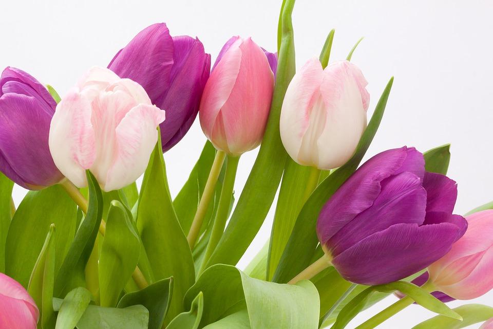 Igénybe vehető a virágküldés Budapest kerületeiben